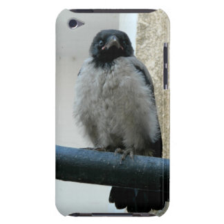 Baby crow barely there iPod case