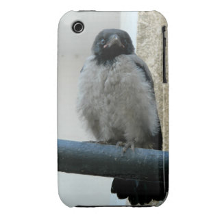 Baby crow Case-Mate iPhone 3 case