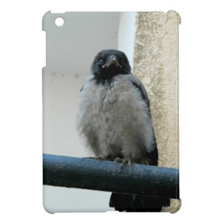 Baby crow cover for the iPad mini