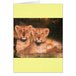BABY CUBS CARD