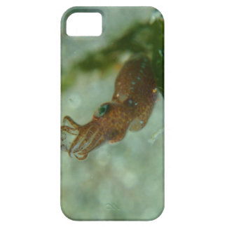 Baby cuttlefish iPhone SE/5/5s case