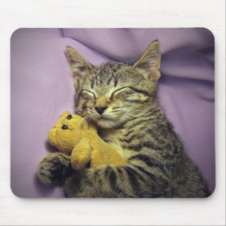 Baby Daisy Kitty Cat Kitten Sleeping w/ Teddy Bear Mouse Pad
