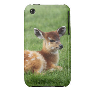 Baby deer fawn woodland nature animal photograph iPhone 3 Case-Mate cases