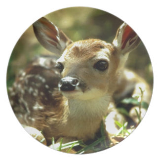 Baby Deer gifts Party Plates