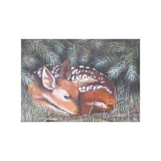 Baby Deer in the Grass Gallery Wrap Canvas