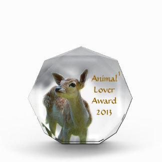 Baby deer's curiosity award