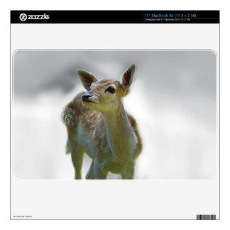 "Baby deer's curiosity decal for 11"" MacBook air"