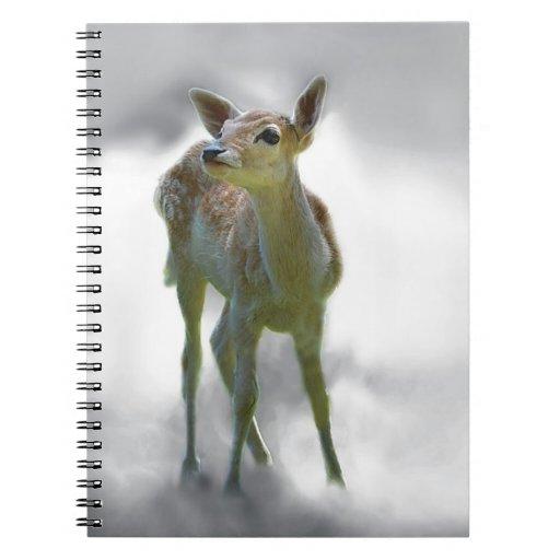 Baby deer's curiosity notebook