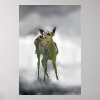 Baby deer's curiosity poster