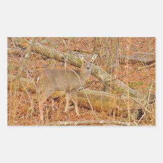 Baby Deer's First  winter Rectangle Sticker