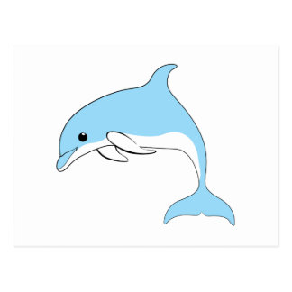 Baby Dolphin Postcard