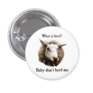 Baby Don't Herd Me Sheep 1 Inch Round Button