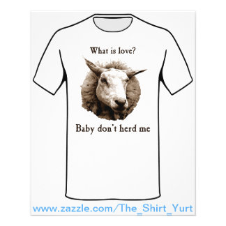 Baby Don't Herd Me Sheep Full Color Flyer
