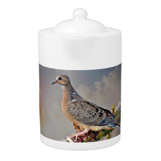 Baby Dove on Golden Rod Cactus Tea Pot