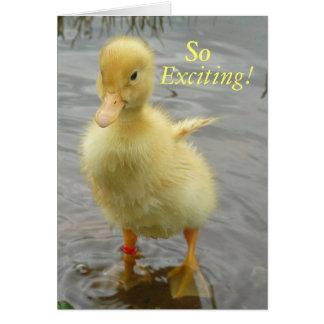 Baby Duck Birthday Card