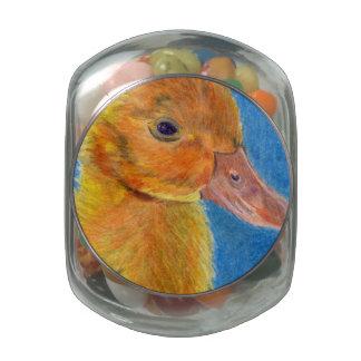 Baby Duck Glass Jars