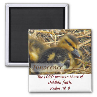 Baby Duck - Innocence 2 Inch Square Magnet