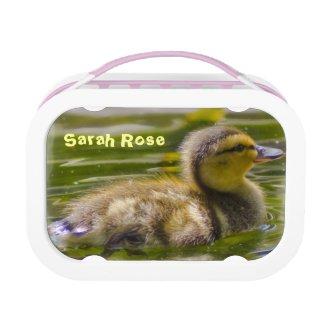 Baby Duck Lunchbox