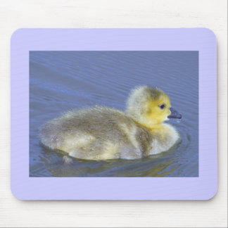 Baby Duck Mouse Pad