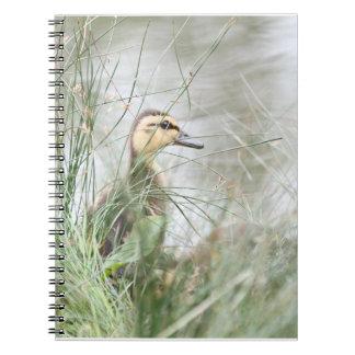 Baby duck note book