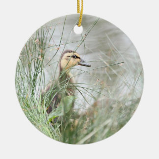 Baby duck ornaments