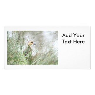 Baby duck personalized photo card