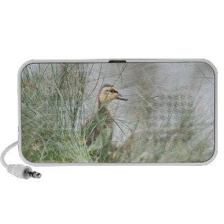 Baby duck portable speaker