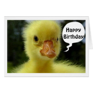 BABY DUCK SAYS HOPE YOUR BIRTHDAY IS JUST DUCKY GREETING CARD