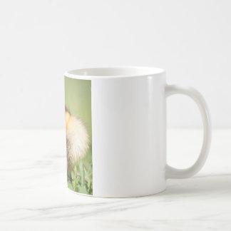 baby duck sleeping coffee mug
