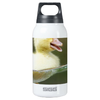 baby duck swimming cute thermos water bottle
