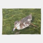 Baby Duck Swimming Kitchen Towel
