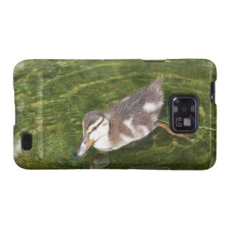 Baby Duck Swimming Samsung Galaxy Case Samsung Galaxy SII Cover