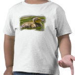 Baby Duckie T-shirt