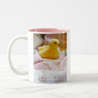 Baby Duckling Mug / Coffee Cup