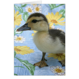 baby duckling on flowered background left greeting card