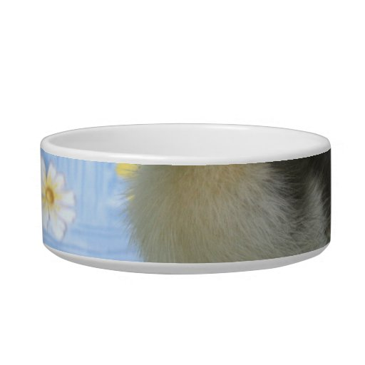 baby duckling on flowered background left pet food bowl