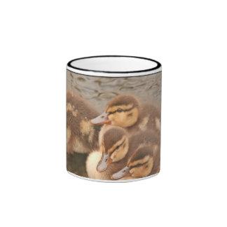 Baby Ducklings Ducks Mug