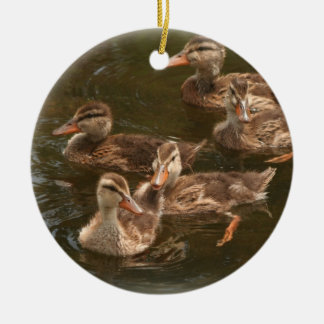 Baby Ducklings Swimming Ornament