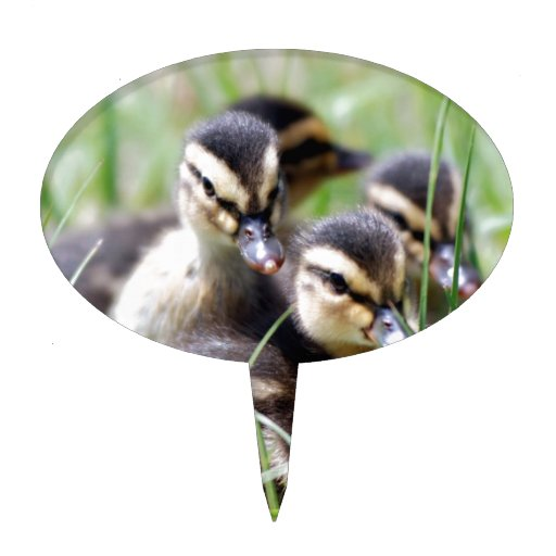 Baby Ducks Cake Toppers