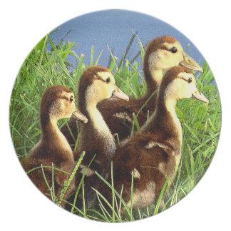 Baby Ducks Dinner Plates