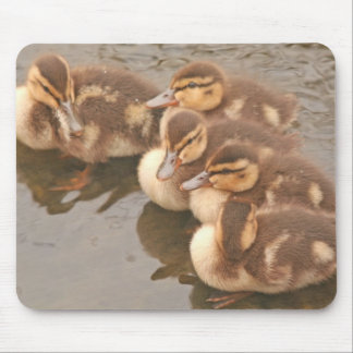 Baby Ducks Mousepad
