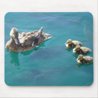 Baby Ducks Mouse Pad