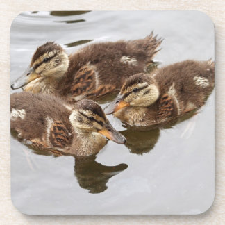 Baby Ducks Photo Coaster