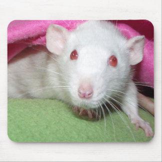 baby Dumbo rat Mousepads