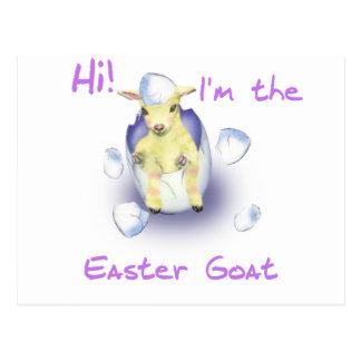 Baby Easter Goat Postcard