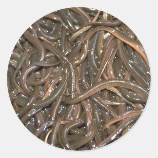 Baby eels classic round sticker