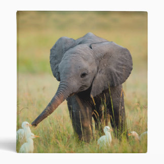Baby Elephant and Birds Binder