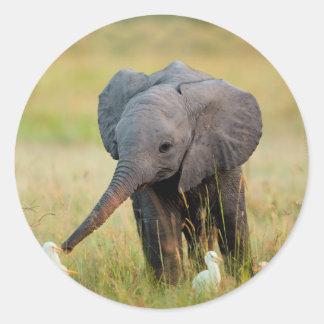 Baby Elephant and Birds Classic Round Sticker