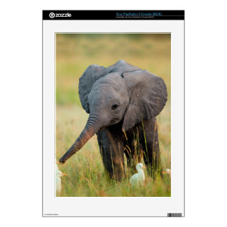 Baby Elephant and Birds Skins For The PS3
