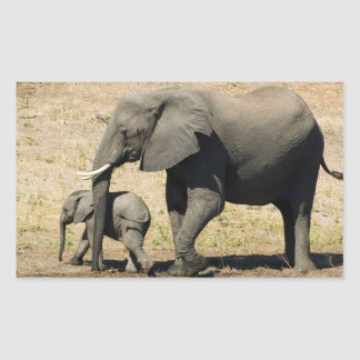Baby Elephant And Mother Rectangular Sticker